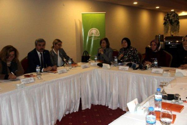 Kayseri'de 'Kırsal Alanda Kadın Güçlendirilmesi' Konulu Toplantı Yapıldı