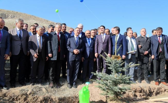 Kayseri, Fidan Dikiminde Türkiye Birincisi Oldu