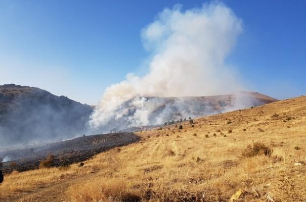 PKK bu kez Sarız'da ortaya çıktı; ormanı ateşe verdi!