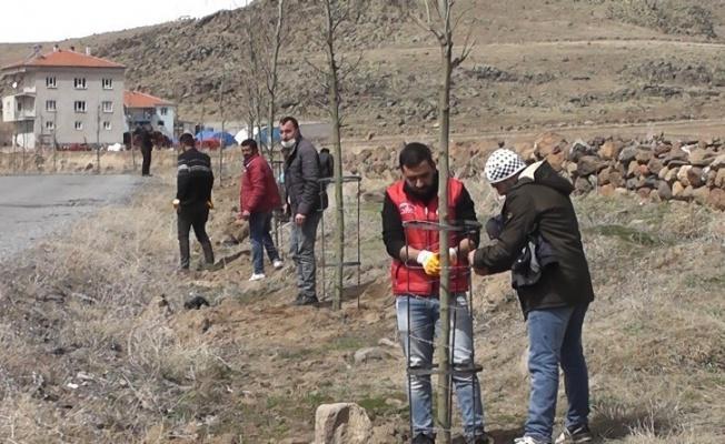 Daha yeşil Çaylıca için 200 ağaç dikildi