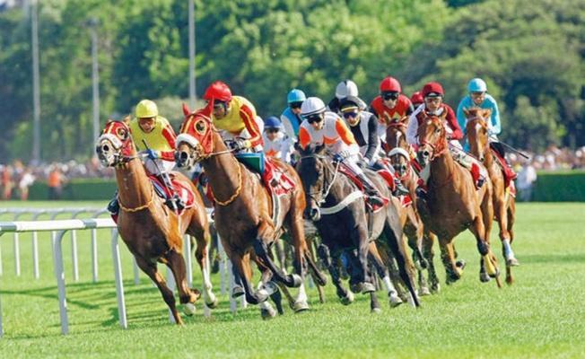 13 Mayıs 2021 Perşembe TJK at yarışı bülteni belli oldu mu? TJK 13 Mayıs Perşembe at yarışı programı