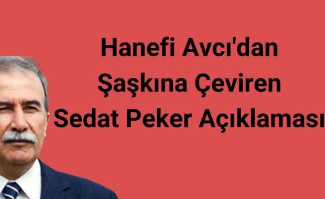 Hanefi Avcı'dan Peker açıklaması: Öyle şeyler söyledi, öyle özel olayları anlattı ki...